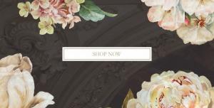 Lafayette & Rushford Shop Header Image